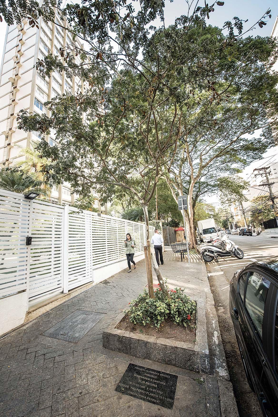 Rua Doutor Melo Alves: história, restaurantes, bares, lojas, prédios e curiosidades sobre esta via dos Jardins