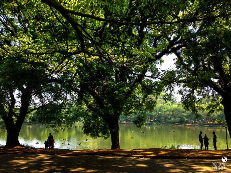 Parques valorizam localização do apartamento e trazem respiro para rotina de moradores