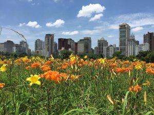 jardim parque do povo