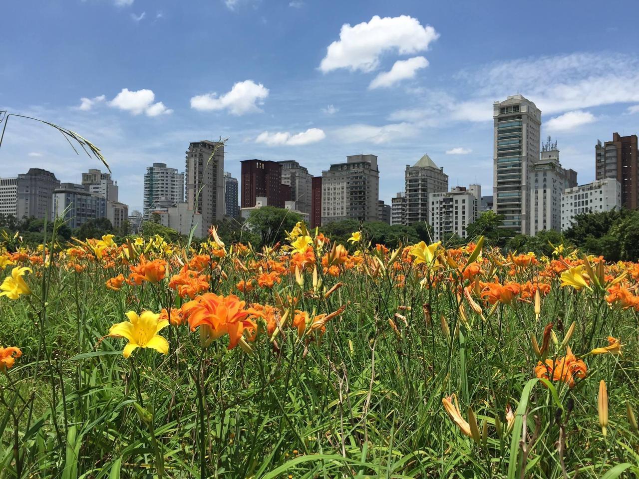 Parque do Povo: Conheça este charmoso Parque no Itaim Bibi
